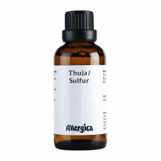 Allergica - Thuja D6