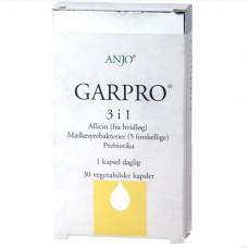 Anjo - Garpro 3-i-1