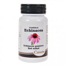 Camette - Echinacea