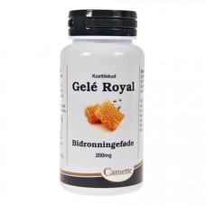 Camette - Gele Royal