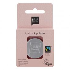 FAIR SQUARED - Apricot Lip Balm